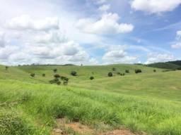 Ótima Propriedade Rural - Pronta para criação de Boi