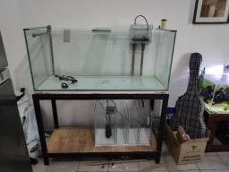 Aquario e base