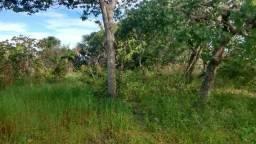 Vendo terra de 40 alqueires no municipio de rio sono to