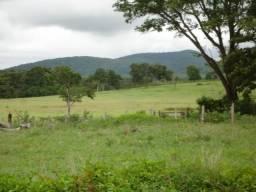 Fazenda 151 hectares em Poconé próximo á Usina de Álcool