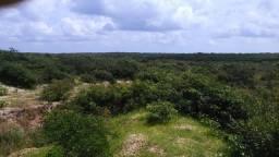 Fazenda em Itarema 230 hectares a 5 km do centro, muita água