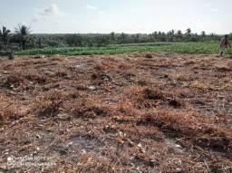 Terreno no panaquatira