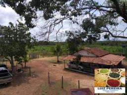 FAZENDA À VENDA EM SÃO VALÉRIO -TO - (EXCELENTE PARA AGRICULTURA)