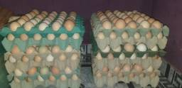 Ovos CAIPIRAS R$30,00 a cuba(trinta ovos)