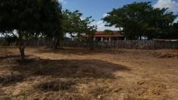 Vendo fazenda 140ha entre pentecoste e croata Ceará Nordeste Brasil