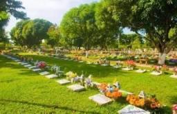Jazigo quitado no Parque da Paz em São Gonçalo