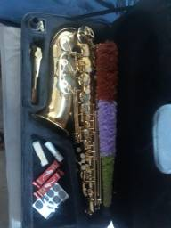 Saxofone Alto Shelter Mib Laqueado SFT 6430