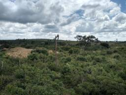 Arrendo propriedade rural na Chapada Diamantina, Morro do Chapéu-Ba