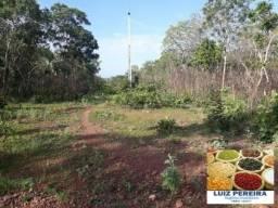 FAZENDA A VENDA EM SÃO VALÉRIO - TO - DE 78 ALQUEIRÕES (Agricultura)
