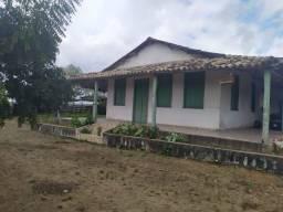 Fazenda Viração - Santo Estevão