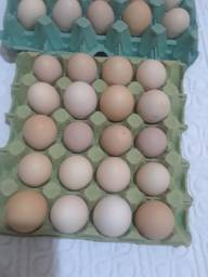 Ovos Caipira - 10 a dúzia!!!