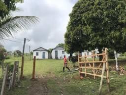 Fazenda a 62 Km de Ilhéus , na Serra da Jacutinga