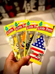Little Trees(cheirinho aromatizador)