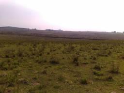 Vendo Campo pra pecuária e lavoura 10mil hc