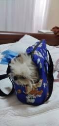 Bolsa de cachorro passeio