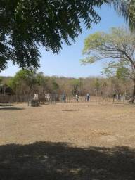 Vendo terreno 100,0He. em José de Freitas, próx: Ema