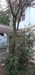 Casa para alugar com 2 dormitórios em Parque imperial, São paulo cod:9549
