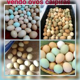 Ovos Caipiras para consumo e Ovos galados