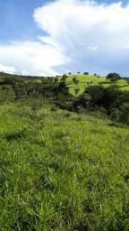Vd faz 64 hectares Girassol, boa d agua p/ gado 900 mil escriturado