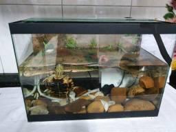 Vende aquário
