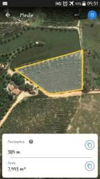 Terreno com aproximadamente com 8000 m2