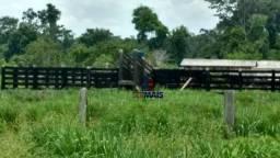 Fazenda muito bem localizada nas proximidade de Cujubim/RO