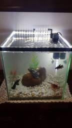 Aquario com filtro e fita led