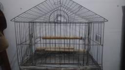 Gaiola papagaio usada