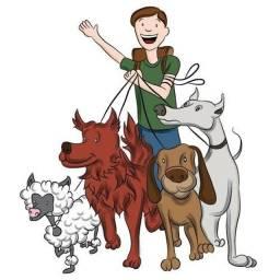Passeador de cães e Hospedagem de Pet's