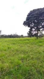 Fazenda de 120 hectares