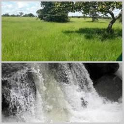 Fazenda maravilhosa pasto água corrente maquinário sede plantação cultura gado