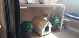 Linda Casinha Pet de madeira