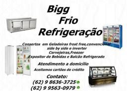 Assistência Técnica Especializada geladeira- conserto