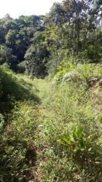 Sítio em Camboriú (Louro) - aceito permuta até 50% do valor!