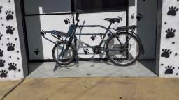 Bicicleta Cargueiro.