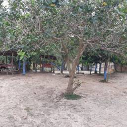 Vendo um terreno em manacapuru