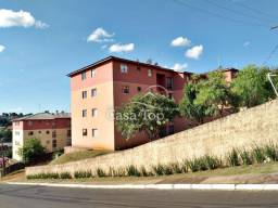 Apartamento para alugar com 2 dormitórios em Estrela, Ponta grossa cod:2721