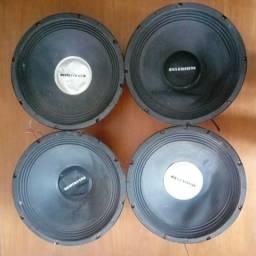 Alto falantes Selenium 12 PW3