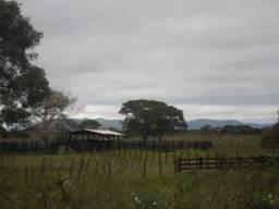 Fazenda com 1500 HA no Pantanal com 7 açúdes, ótimo pasto e mangueiro, galpão, casa