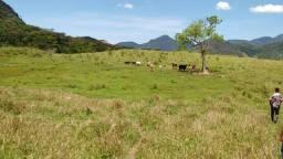 Fazenda 72 Alqueires em Macaé/RJ