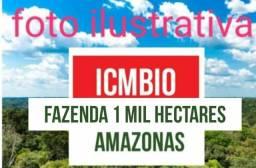 Fazenda com 1 mil hectares com certificado do Icmbio no Amazonas,