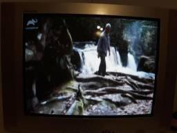Tv lg 29 - imagem perfeita