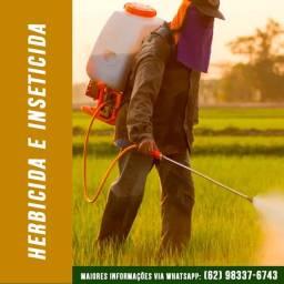 Combate a Pulgão / Formigas em Jardins e Pomares