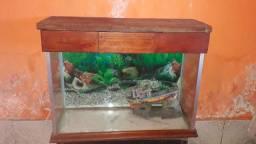 Vende - se aquário completo