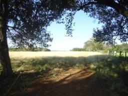 Fazenda no interior de São Borja, RS