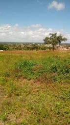 Oportunidade. terreno em Mamanguape