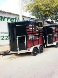 Apresentamos nossa proposta de 01 (uma) carretinha para transporte de dois animais: