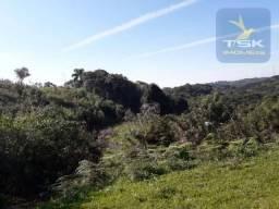 CH0378 - Chácara à venda, 7298 m² por R$ 85.000 - Areia Branca dos Assis - Mandirituba/PR