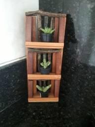 Floreira com galho e madeira para suculentas