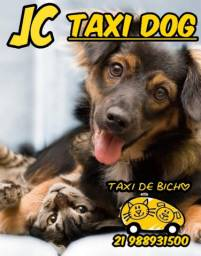 Táxi dog JC - RJ